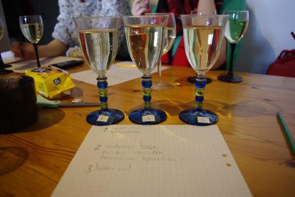 Viinien analysointi oli yllättävän haastavaa, mutta illan lopussa olimme jo kaikki asiantuntijoita.