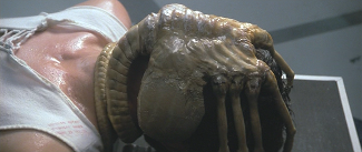 Alien-The_Facehugger