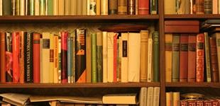 Kieleke testaa: kirjastot