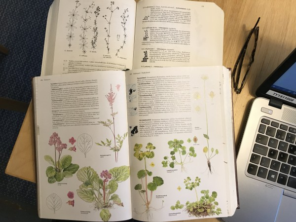Etummainen kirja on Suuri Pohjolan kasvio, jonka kuvasta näkee soikon ja hertan välisen eron lehtien muodossa. Taustalla Retkeilykasvio avoinna mataroita käsittelevästä kohdasta.