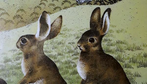 Eläintarinoita osa I: Ruohometsän kansa